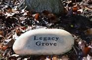 Rock with Legacy Grove written