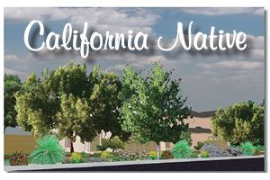 California Native Planting Plan (PDF)