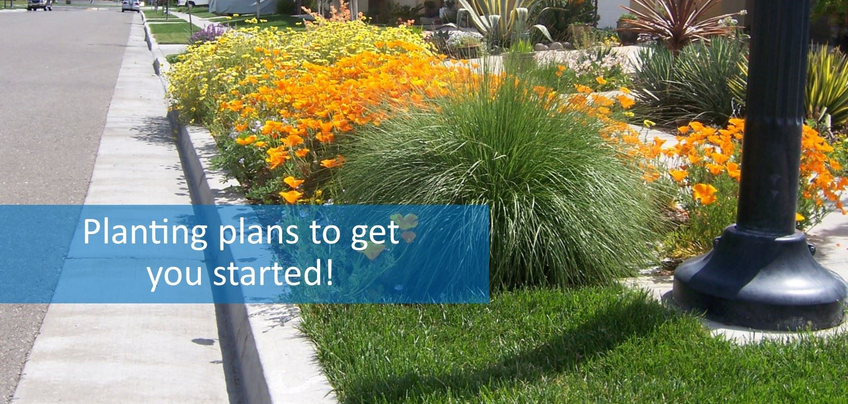 Landscape - Planting plans to get you started!
