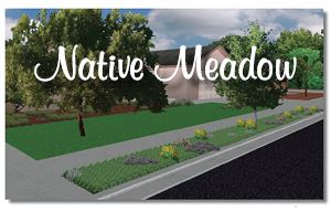 Native Meadow Planting Plan (PDF)