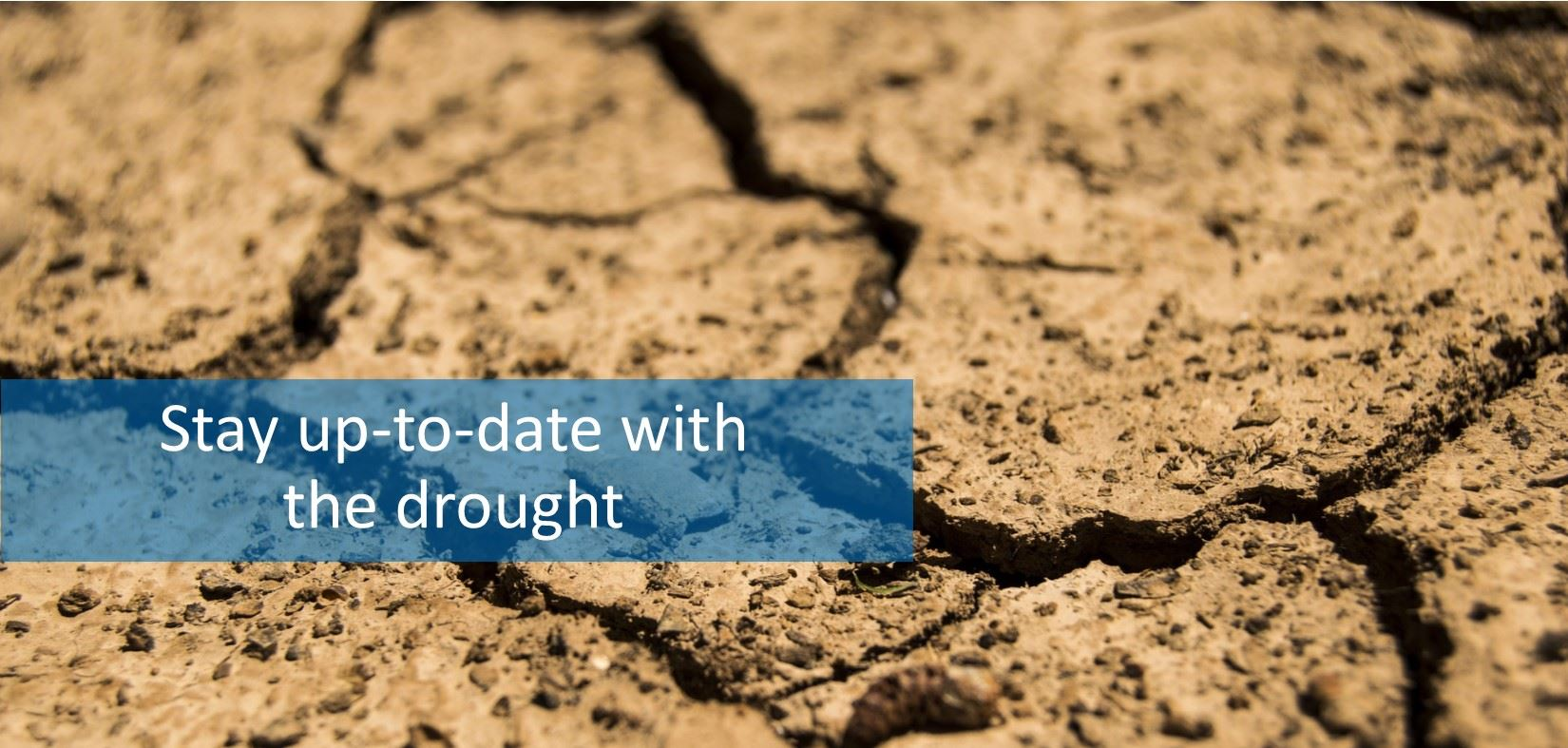 Drought - Stay up-to-date with the drought.