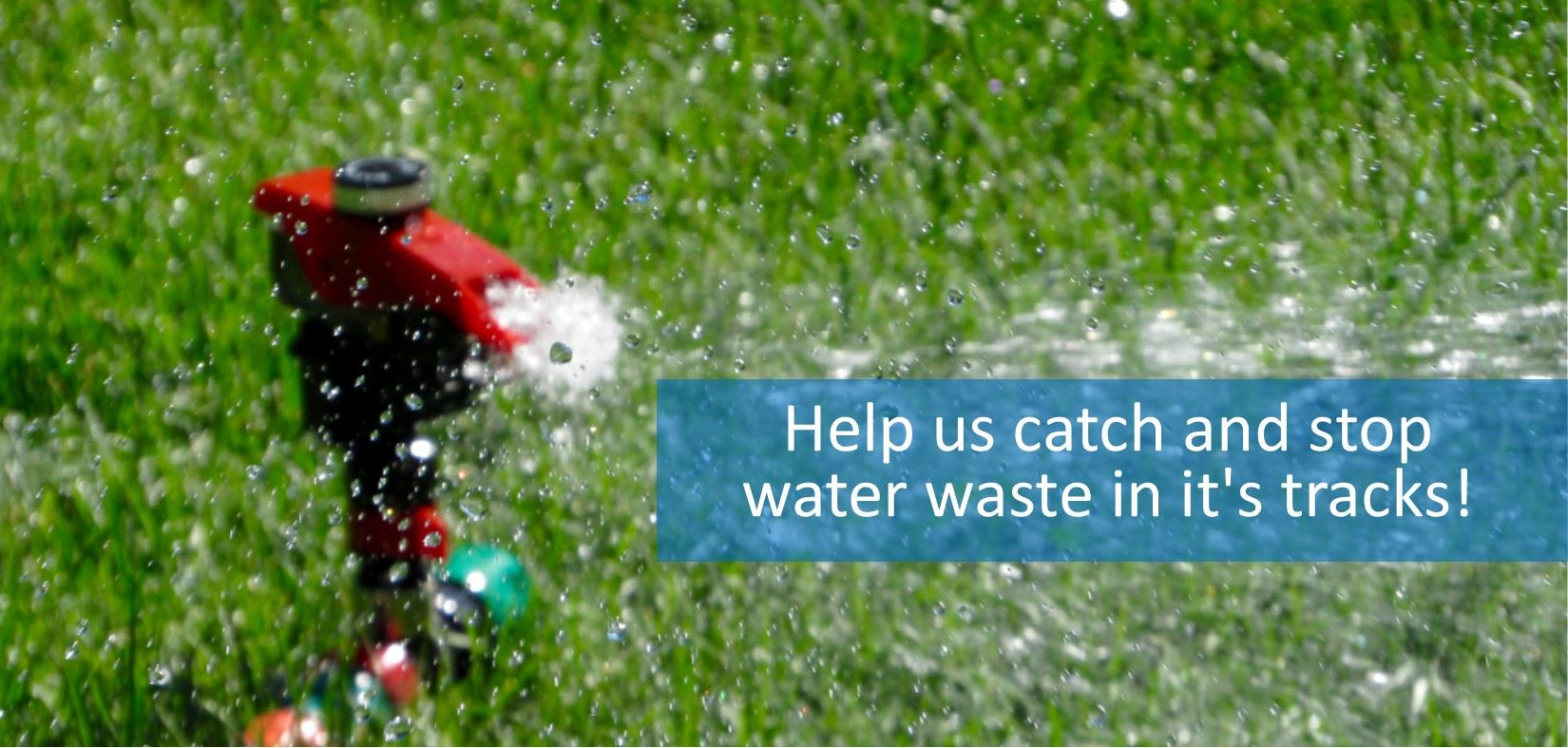 Water Waste - Help us catch and stop water waste in its tracks!