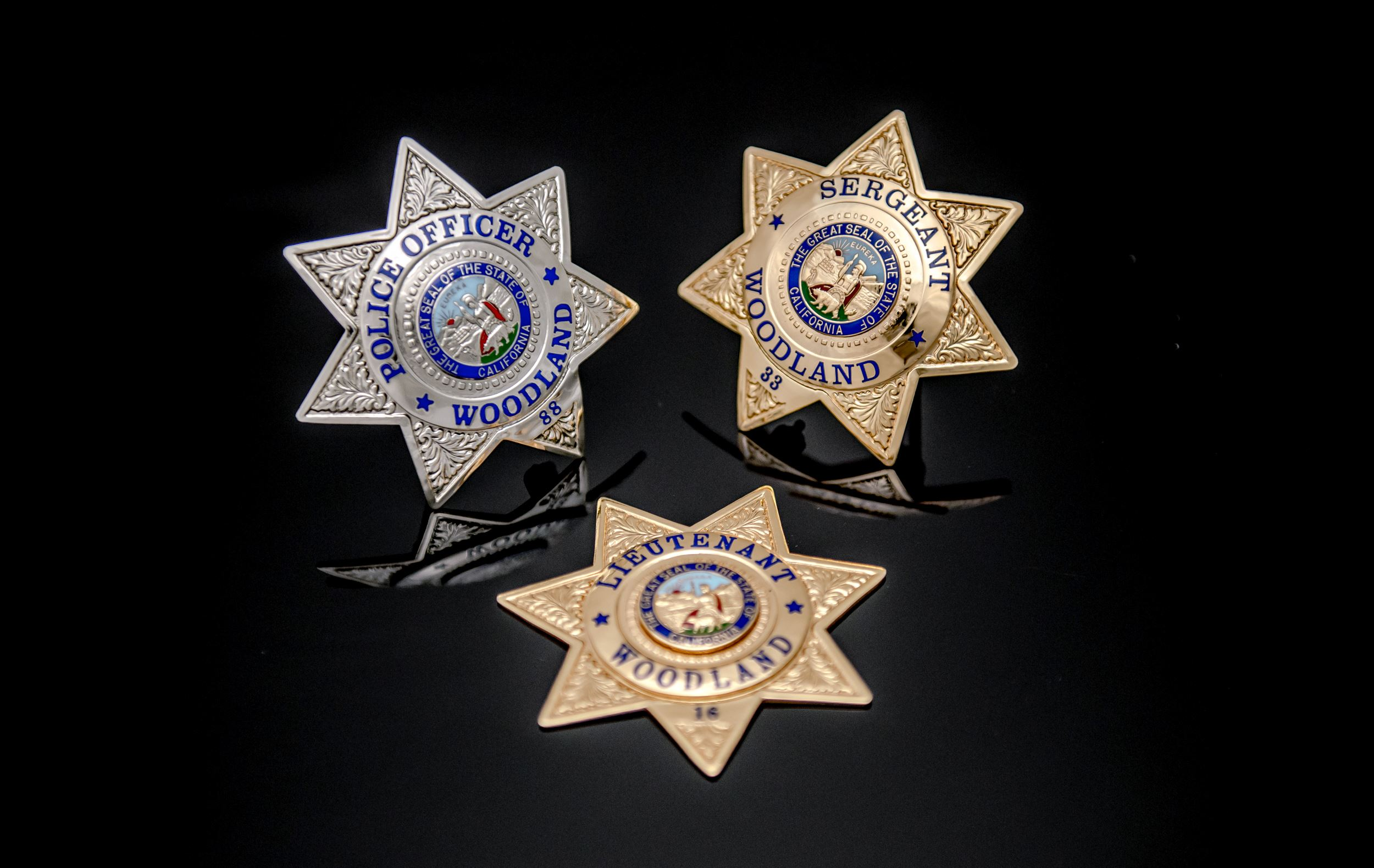 All 3 Badges of the Police Department